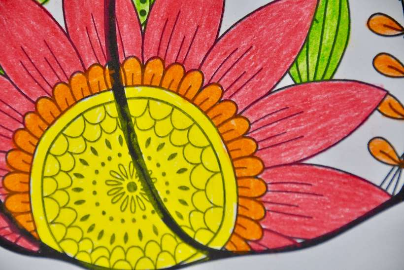 Colorful flower part of an easy pumpkin zentangle coloring page.