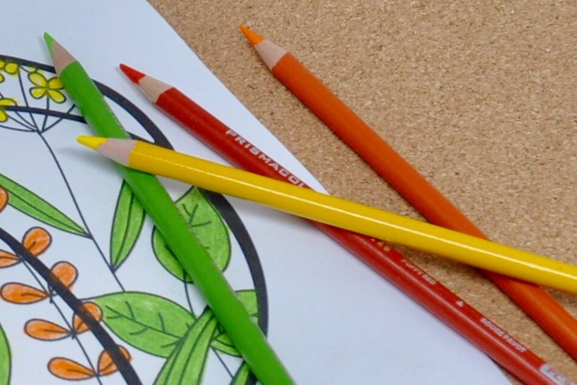 Colored pencils for dementia coloring activity.