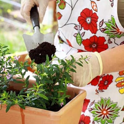 Elderly woman with dementia planting flowers