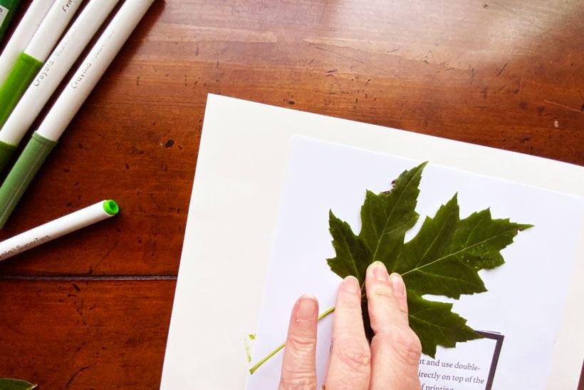 Leaf printing dementia craft