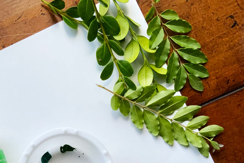 Shrub leaves for dementia leaf print activity
